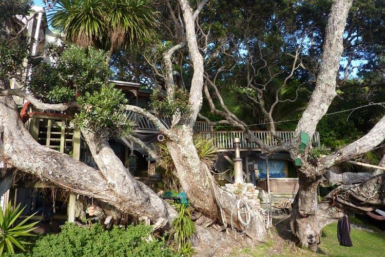 Árbol Maraehako Bay Retreat