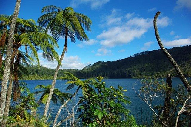 Vistas del Blue Lake de Rotorua