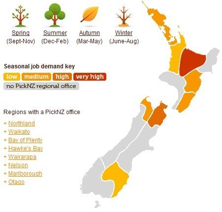 Recogida de fruta invierno en Nueva Zelanda