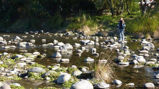 Río Tongariro en Nueva Zelanda