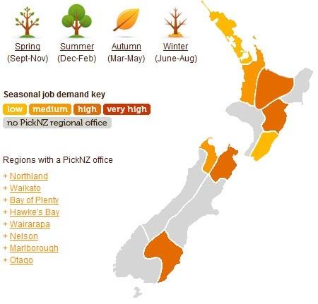 Recogida de fruta verano en Nueva Zelanda