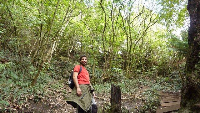 Subiendo al monte Maunganui de Tauranga