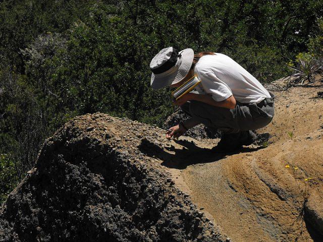 Buscar trabajo como geólogo en Nueva Zelanda